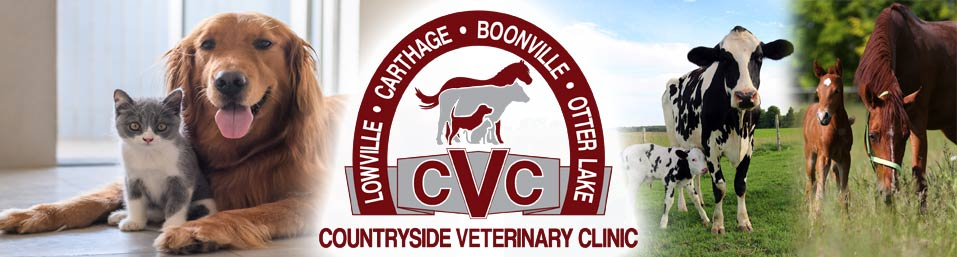 Our Doctors - Countryside Veterinary Clinic, LLP - Lowville, NY